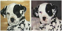 Pet Portraits in Acrylic Paints