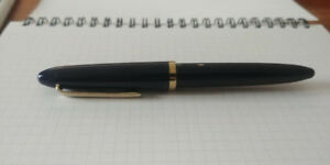 Plume Sailor Fude de mannen Fountain Pen