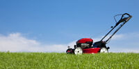 Lawn mowing and trimming service