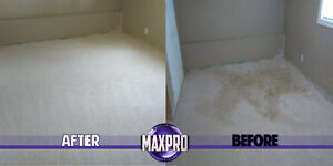 Professional Carpet Cleaning Specials Kawartha Lakes Peterborough Area image 6