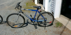 Boys 15 speed bicycle
