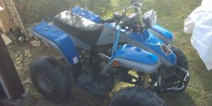 2007 Bushbear ATV