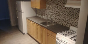 Renovated 3 Bedrooms- Close to U of O - July/Aug 2018 allinclu