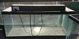 55 gallon and other aquariums for sale.