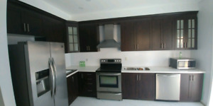 Kitchen Cabinets,Countertop- 647-835-2247