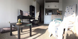 Furnished studio apartment in downtown close to mcgill