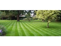 Garden Maintenance Fornightly/Monthly. Lawn mowing, Feed, Waste removed.