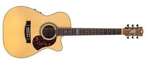 Guitar of Tommy Emmanuel ebg808te/c Cutaway NEW Model