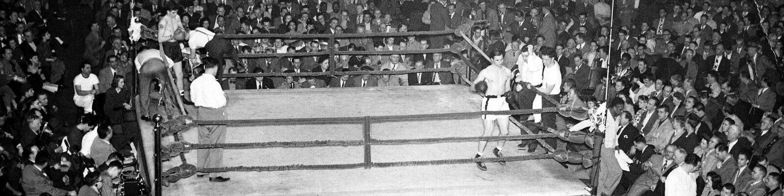 Animo Boxing