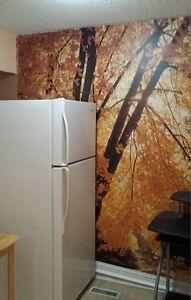 etobicoke find local room rental roommates in ontario