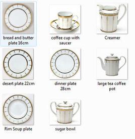 Large Sellection of Haviland Tambour Dinnerware
