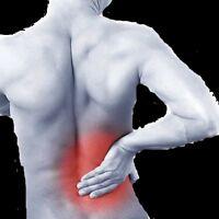 Physiotherapist needed