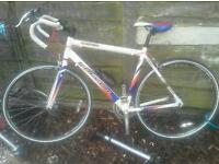 Sports racer Bicycle