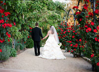 $100 wedding couple pictures August 1,