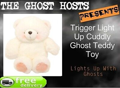 Along with being cute - the light up teddy is a great way to interact with child spirits.
