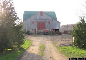 Wanted: barn for rent