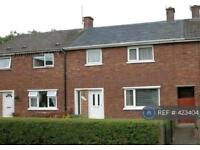 3 bedroom house in Newhall Road, Chester, CH2 (3 bed)