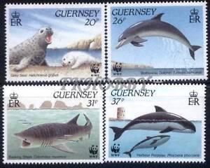 GB Guernsey 1990 Mi 497-00 *** WWF Animals Pets Seal Dolphin Shark Whale Delfin -  Dabrowa, Polska - GB Guernsey 1990 Mi 497-00 *** WWF Animals Pets Seal Dolphin Shark Whale Delfin -  Dabrowa, Polska