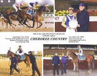 Standing at Stud- Cherokee Country(TB), E speed rating 123!