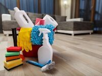 Looking For A Domestic Cleaner In Cardiff? Just £10 Per Hour - Taking Bookings Now - Call Today