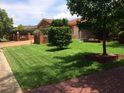 Elite Lawn and Yard Maintenance