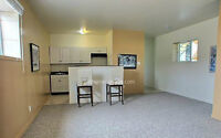 Two Bedroom lower level Suite for Rent