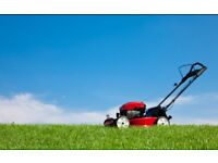 Gardening, mowing lawn, gardener services and handyman services