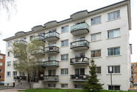 Janitor Couple Required for a 50 unit apartment building in Lach