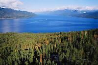 Incomparable Waterfront Land on Kootenay Lake