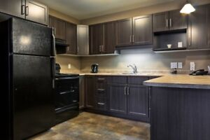 Modern Open Concept 3 Bedroom Suite - Available Feb 1st!