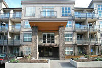 FOR RENT-$850/month 1BR 1 Den Urban Style Condo(West Abbotsford)