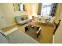 Stunning 3 bedroom flat available in Paddington station, W2.