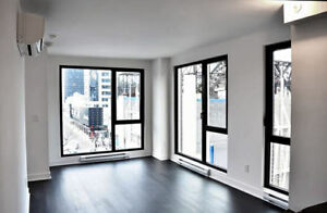 Brand new 1 bedroom condo for rent December 1st (Atwater metro)