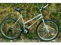Ladies bike, 19 inch frame