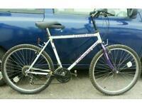 Townsend unisex lightweight bike
