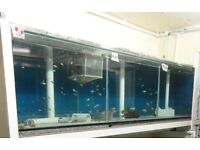 Tropical Fish Tank / Aquarium 6ft x 1.5ft x 1.5ft with glass covers