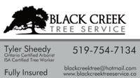 Tree Removals, Pruning, Stump Grinding and Line Clearing