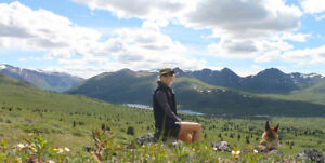 Housesitting in Whitehorse, Yukon