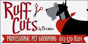 Ruff cuts by Bri dog grooming
