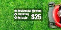 Lawn care/ maintenance *Ground Control To Major Lawn*