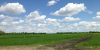 3/4 Acre Lots on Gull Lake - Set For Living!