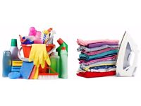 DOMESTIC CLEANER - HIGH QUALITY - IRONING CLOTHES