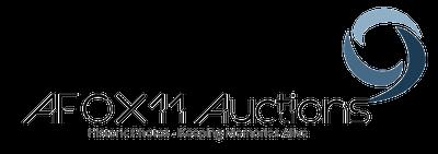 afox11-auctions