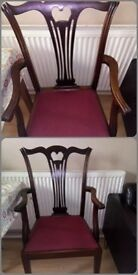 Beautiful Head of the table/Carver chair - in a retro gothic design