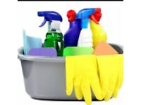 Professional domestic cleaner