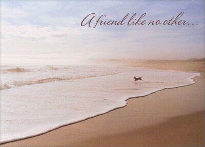 Dog Running On Beach Pet Sympathy Card - Greeting Card by Avanti Press (Beach Greeting Cards)