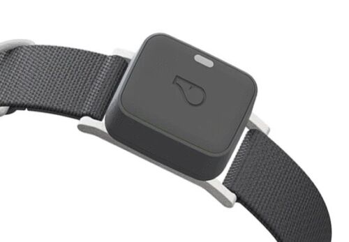 Whistle Go Explore Ultimate Smart Health Location Tracker For Pets/Grey GPS Gray - $104.99