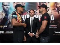2 x Anthony Joshua v Eric Molina Boxing Tickets *LESS THAN FACE VALUE - PREMIUM TIER ONE SEATS*