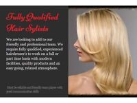 Fully qualified Hair stylists