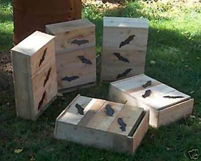 Bat House.For Older. boy scouts.1=SIX chamber.Firehardened to last.M.Holley